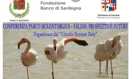Cagliari – Il parco Molentargius-Saline: Prospettive Future