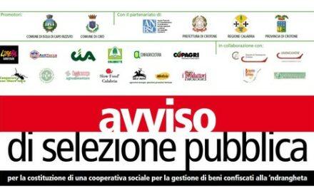 Avviso di selezione pubblica per coop sociale per gestione di beni confiscati alla 'ndrangheta