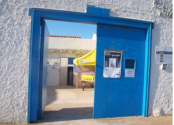 Asinara – Installazione multimediale