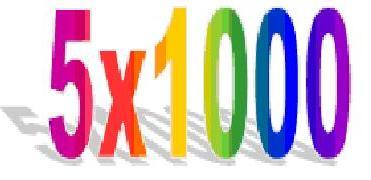 5×1000 degli anni 2006-2009