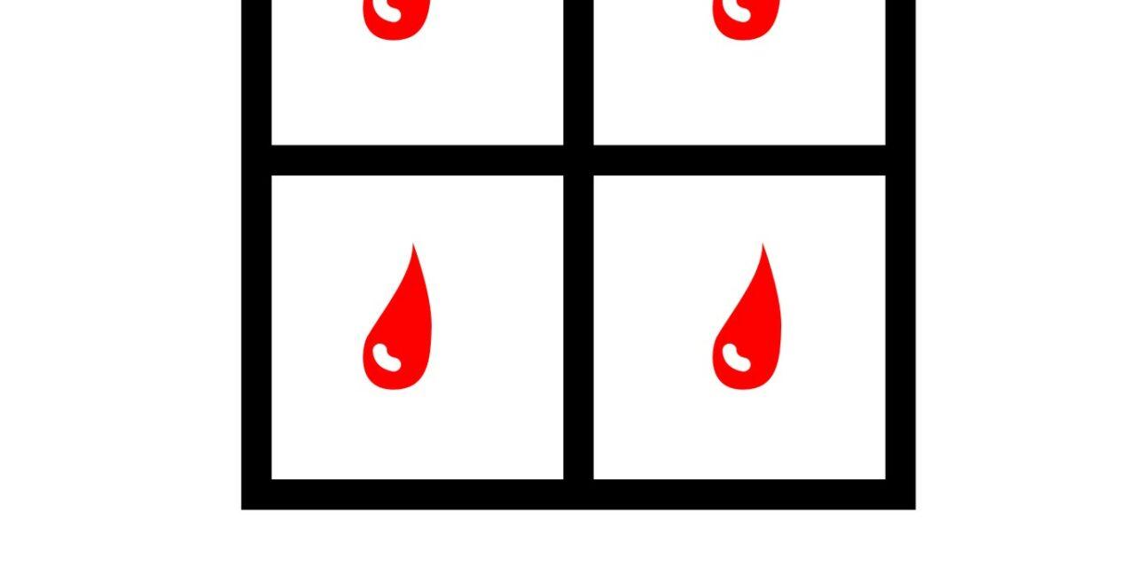 Thalassemia ti conosco, non ti temo