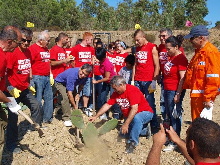 Estate Liberi! Volontari e amministratori piantano i fichi d'india a Gergei