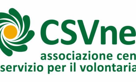 Roma – Gruppi di lavoro e Consiglio direttivo CSVnet