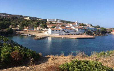 Cala D'Oliva, Asinara – Avviati i campi di volontariato e formazione. Aperto il bunker di Cala D'Oliva
