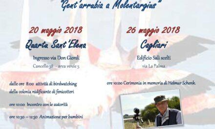 Gent'arrubia a Molentargius – Festa dei 25 anni di nidificazione