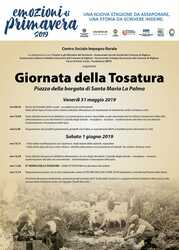 Santa Maria La Palma – Giornata  della Tosatura 2019. XIV edizione
