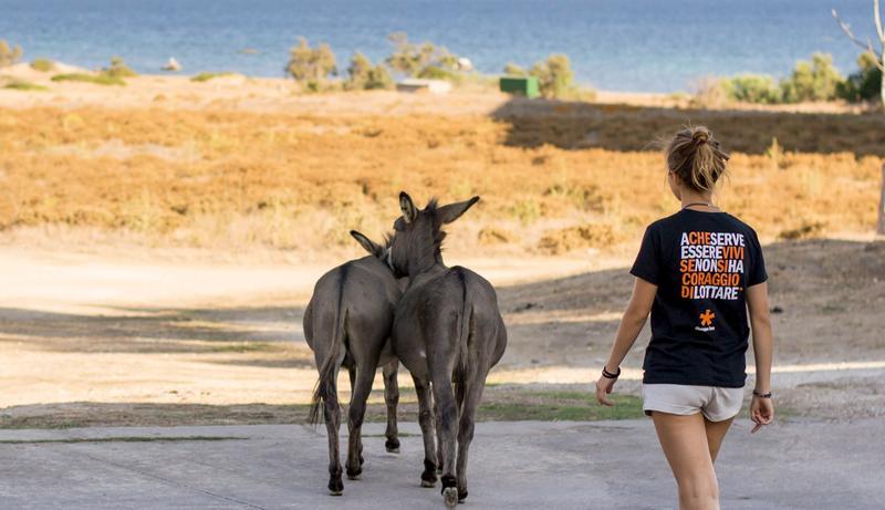 E!state Liberi! – Campi di volontariato all'Asinara