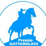 Premio_Gattamelata_2016_maxw300